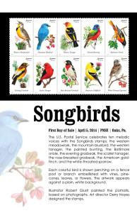 birds_prog_front