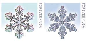 snowflake_env2