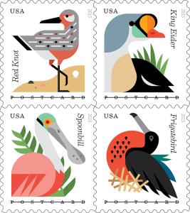 s_coastalbirds