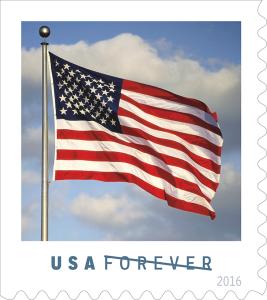 s_flag