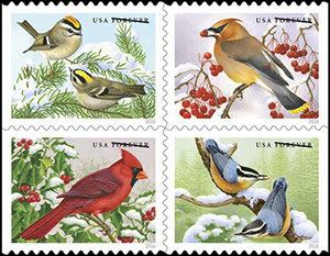 songbirds_aps