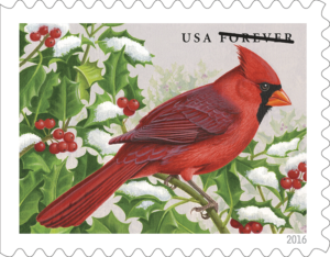 songbirds_cardinal