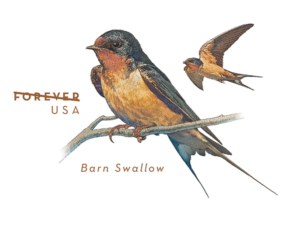 barn swallow envelope u s 2017 virtualstampclub com virtual stamp club
