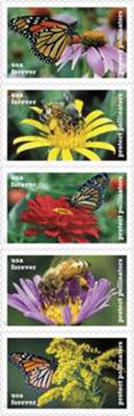 s_pollinators1