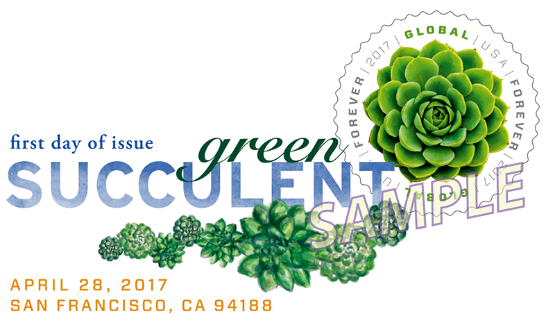 Green Succulent Global Forever U S 2017