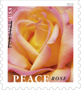 Issue Peace Rose Stamp Item Number 681800 Denomination Type Of First Class Mail Forever Format Double Sided Booklet 20 1 Design