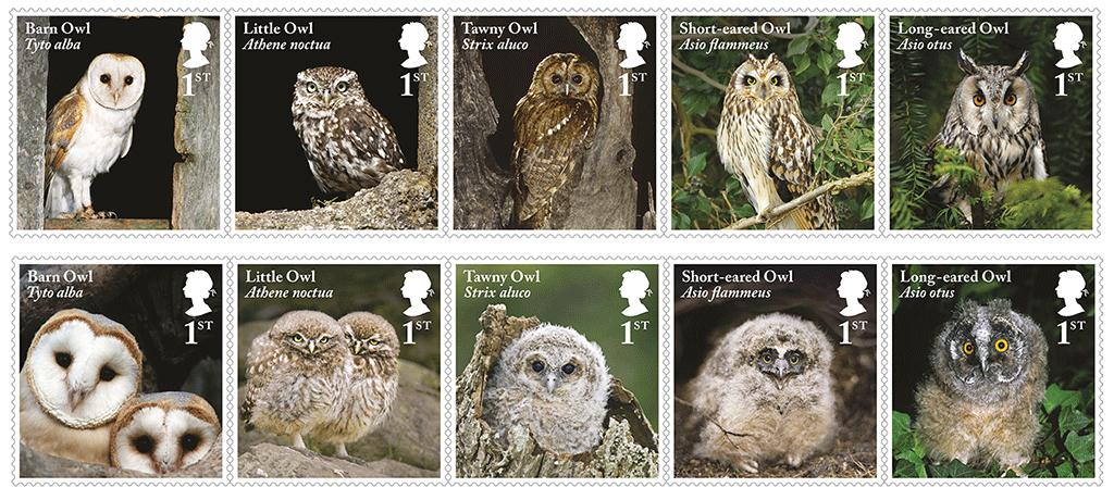 iconic british owls uk 2018